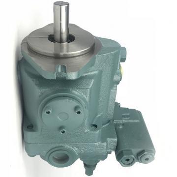 Daikin VZ63C11RJAX-10 Piston Pump