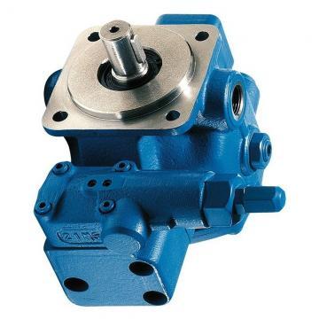 NACHI IPH-46B-20-100-11 Double IP Pump