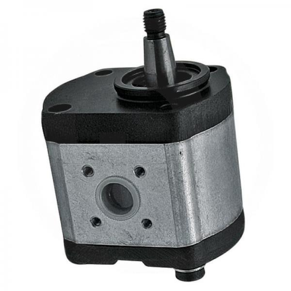 Daikin VZ80C12RHX-10 Piston Pump #1 image