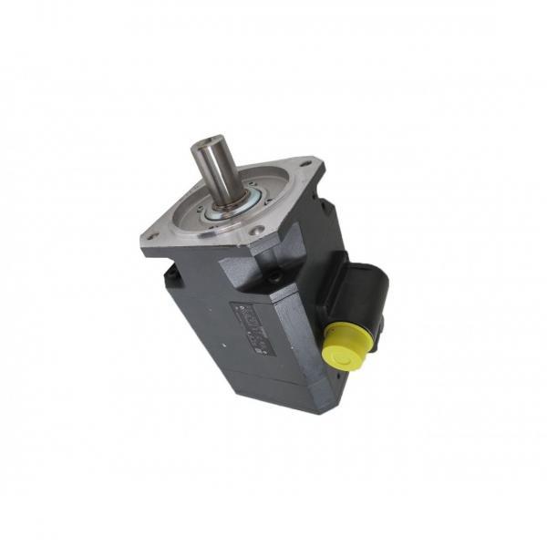Denison PV10-2L1D-C02-000 Variable Displacement Piston Pump #1 image