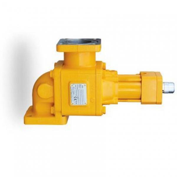 Denison PV15-2L1D-L02 Variable Displacement Piston Pump #1 image