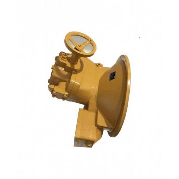 Denison PV20-2L1C-C00 Variable Displacement Piston Pump #1 image