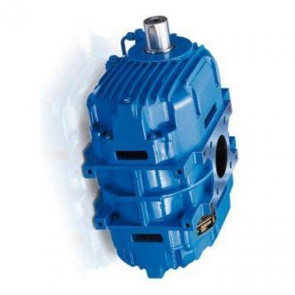 Parker PV040R1L1T1NFDS Axial Piston Pump #1 image
