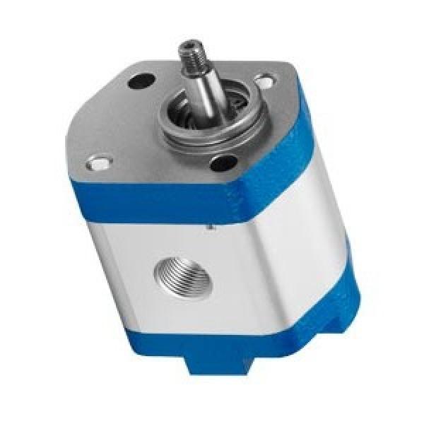 Parker PV028R1K1T1NMM1 Axial Piston Pump #1 image