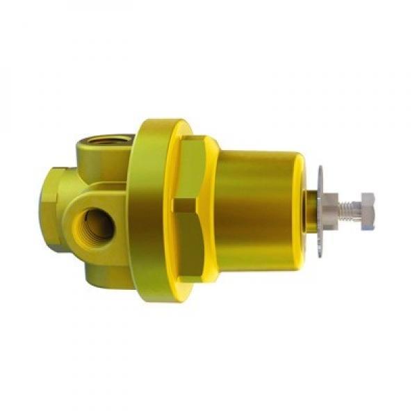 Vickers PVB5-RDY-20-ML-10 Axial Piston Pumps #1 image
