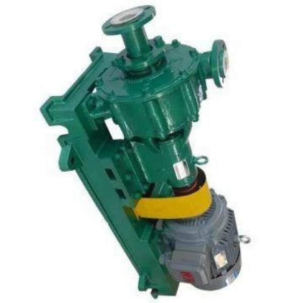 Yuken PV2R23-65-116-F-RAAA-41 Double Vane Pumps #1 image